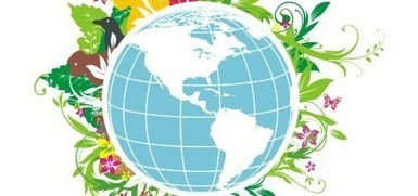 International Bio-Diversity Day observed - PakistanToday.com.pk | ayubia national park | Scoop.it