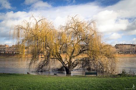 Les pieds dans l'eau | Toulouse La Ville Rose | Scoop.it