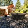 Vancouver BC : Trees. Parks, Gardens, Landscapes