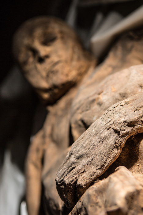 Child Mummy Found With Oldest Known Smallpox Virus | NetBiology | Scoop.it