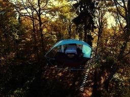 Trees and People, des tentes perchées très sympas... | Solutions alternatives pour un monde en transition | Scoop.it