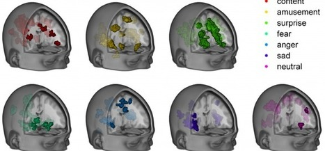 A neural code for emotion: tracking unconscious emotional influences – with fMRI | Social Foraging | Scoop.it