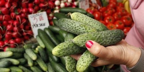 L'agriculture, un terreau fertile pour l'économie collaborative | Tipkin | Scoop.it