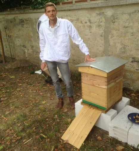 Croissy-sur-Seine : la ruche installée par la mairie vandalisée | Espace Chanorier | Scoop.it