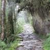 Ecotourisme au Pérou