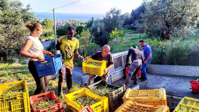 Cooperative in Calabria Offers Much More Than Good Olive Oil
