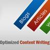 Professional Web Services | Website Design | Website SEO Services