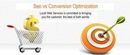 Seo vsCO   Website Designs   Scoop.it