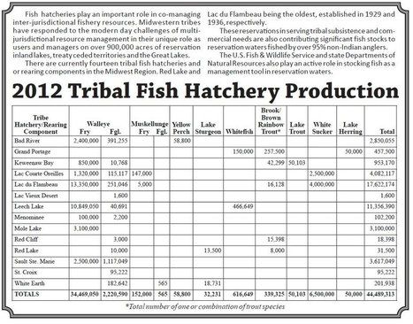 2012 Tribal Fish Hatchery Production - Give more than what is taken - #IdleNoMore #honorthetreaties   IDLE NO MORE WISCONSIN   Scoop.it