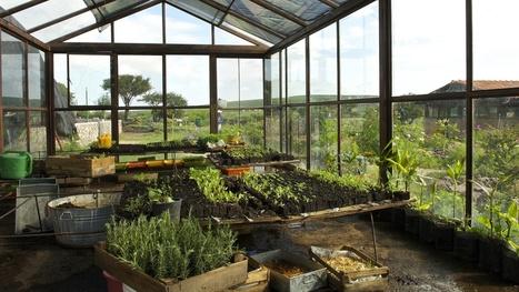 Investigadores apuestan por la agricultura regenerativa - Regeneration International | Permacultura y autosuficiencia | Scoop.it