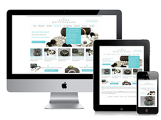 Mobile Responsive Design Service. Mobile SEO Solutions | SEO Tips, Advice, Help | Scoop.it