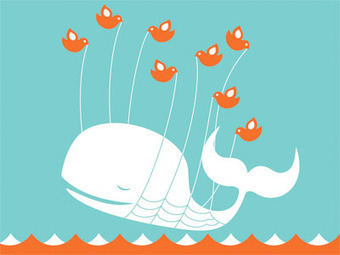 The Biggest Mistake People Make On Twitter | Education and Digital Curation tools | Scoop.it