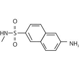 Benzanilide vinyl sulphone (G N Base) manufactu
