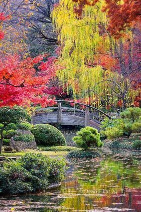 Photograpy :D | A Love of Japanese Gardens | Scoop.it
