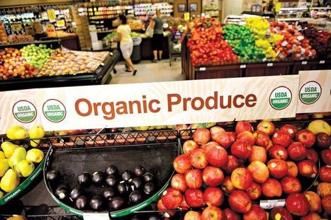 Stop buying organic food if you really want to save the planet - New Scientist (2016)  | Ag Biotech News | Scoop.it