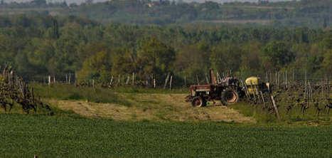 Aides agricoles : la France devrait rembourser 3,6 milliards à Bruxelles - Agro Media | Actualité de l'Industrie Agroalimentaire | agro-media.fr | Scoop.it