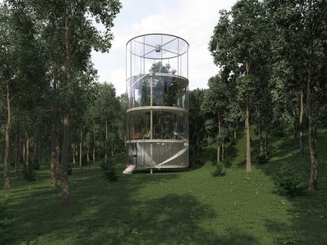 Insolite : Une maison transparente construite autour d'un arbre | Aménagement des espaces de vie | Scoop.it