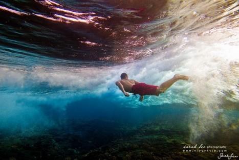 Sarah Lee Underwater Photography | ewa-marine | Scoop.it