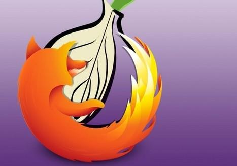 Pour protéger votre vie privée, Firefox 52 prend exemple sur Tor - MeilleurActu | Gestion de l'information | Scoop.it