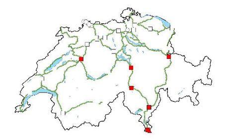 Œufs de moustique-tigre découverts au nord des Alpes suisses | EntomoNews | Scoop.it