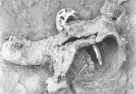 Archaeological Evidence for 1700-Year-Old Chemical Warfare - Ancient Origins | AncientHistory@CHHS 2012-13 | Scoop.it
