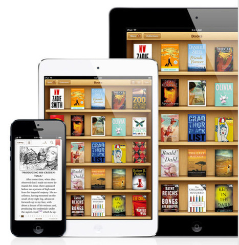 A Beginner's Guide To Setting Up An eBook Library On Your iPad | The Future Librarian | Scoop.it