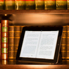 The Digital Book: Fad or Permanent Change?