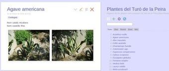 EDUCATIVA: TiddlyWiki: Entre libro electrónico, página web y base de datos | #TRIC para los de LETRAS | Scoop.it