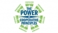 Home - National Cooperative Business Association | Cooperatives | Co-ops | Scoop.it