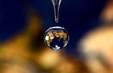 El agua en imágenes | Genética humana | Scoop.it