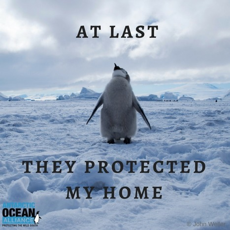 Major Victory for Protection of the Ross Sea Hope Spot | All about water, the oceans, environmental issues | Scoop.it