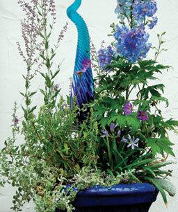 "Enter the 2011 Container Design Challenge - Fine Gardening Article | ""Gardening"" | Scoop.it"