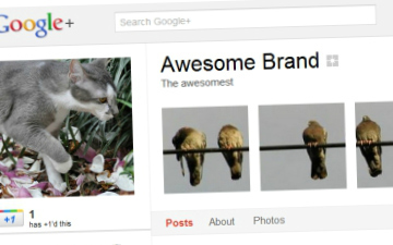 How to Create a Google+ Profile Banner in 5 Minutes | Google+ and Social Networking | Scoop.it