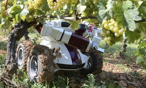 Robot farmers are the future of agriculture, says government | Robotic applications | Scoop.it