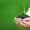 Love of soil 119