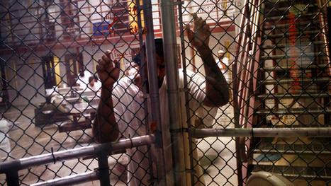 US judge temporarily halts force-feeding of Guantanamo prisoner | Criminal Justice in America | Scoop.it
