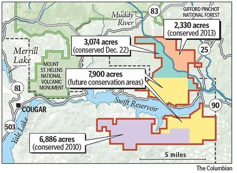 Pope sells conservation easement on 3,000 acres of forest near Mount St. Helens   Timberland Investment   Scoop.it