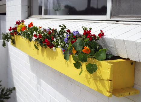 Gardening: think outside the box   ideas verdes   Scoop.it