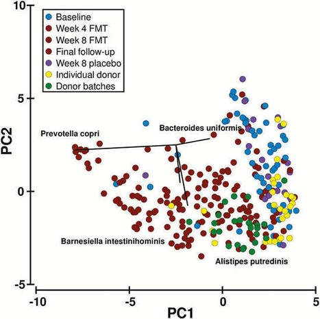 OP019 In faecal microbiota transplantation (FMT
