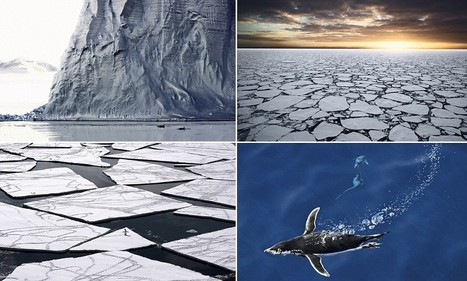 The world's last pure ocean: Beautiful images of the only body of water that has still not been spoiled by mankind | All about water, the oceans, environmental issues | Scoop.it
