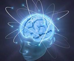Handful of genetic changes led to huge changes to human brain   On Being Human   Scoop.it