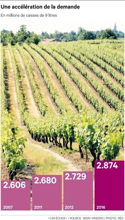 Les Chinois boivent plus de vin rouge que les Français | Route des vins | Scoop.it
