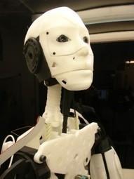 InMoov | Open Source 3D Printed Lifesize Robot | DIY | Maker | Scoop.it