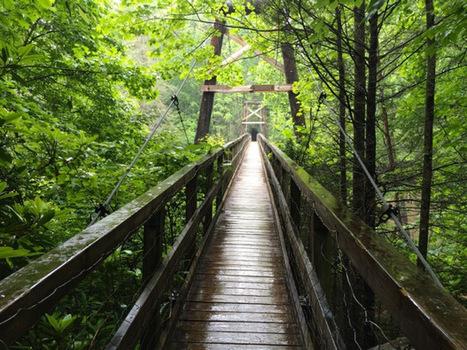 Toccoa River Swinging Bridge - Backroad Planet | Motorhome Madness | Scoop.it