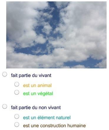 Cahier Virtuel «Vivant - non Vivant» | Didapages | Scoop.it