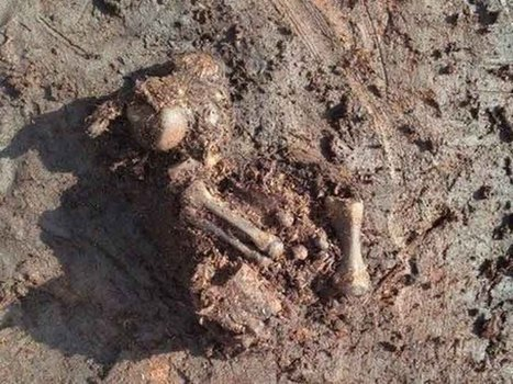 New bog body found by peat worker most likely from Bronze Age - IrishCentral | Archaeology and the Bronze Age | Scoop.it
