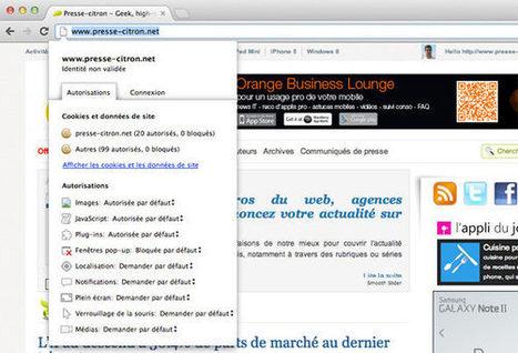 La 23ème version stable de Google Chrome est disponible | Infos e-tourisme FROTSI Bourgogne | Scoop.it