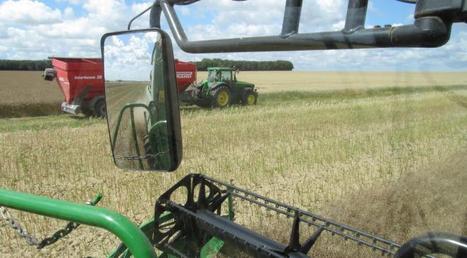 Les agriculteurs peuvent-ils réduire leur dépendance en pesticides ? | Pour une agriculture et une alimentation respectueuses des hommes et de l'environnement | Scoop.it