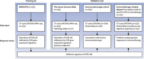A radiomics approach to assess tumour-infiltrat