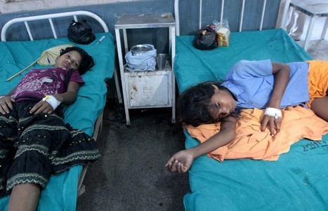 Pesticide confirmed in deadly Indian school lunch   Fairness   Scoop.it